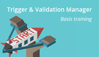 Trigger & Validation Manager basis training
